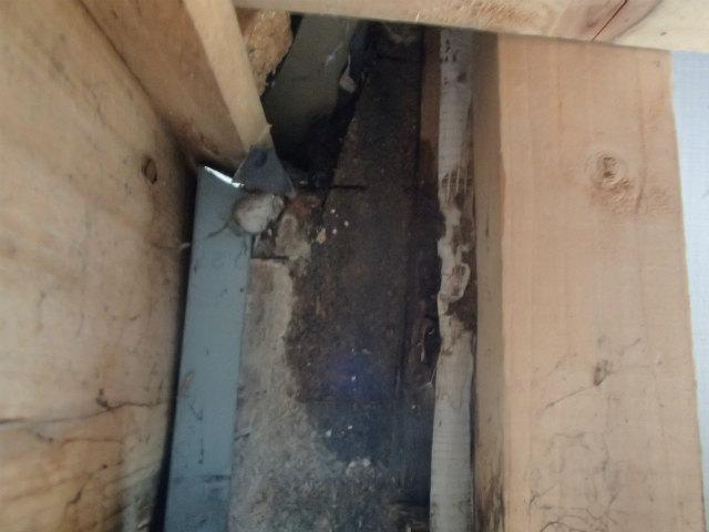 外壁の裏側 雨漏り 宮城県石巻市