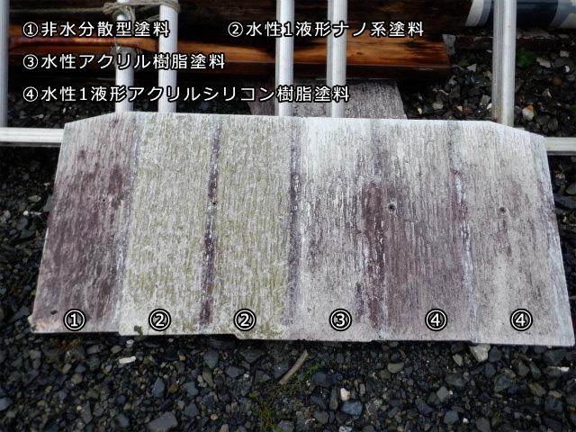 防カビ 防藻 屋外暴露試験 水性塗料