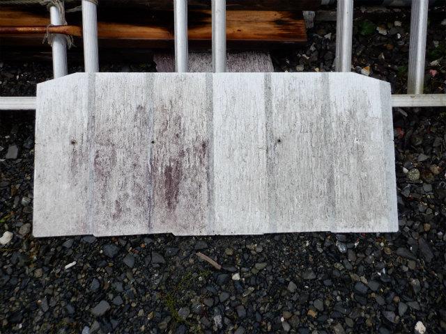 防カビ 防藻 屋外暴露試験
