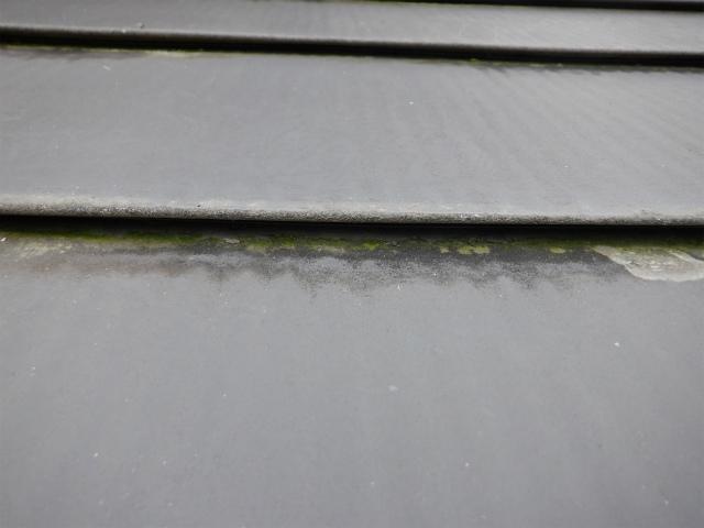 ハゼ トタン屋根 汚れ
