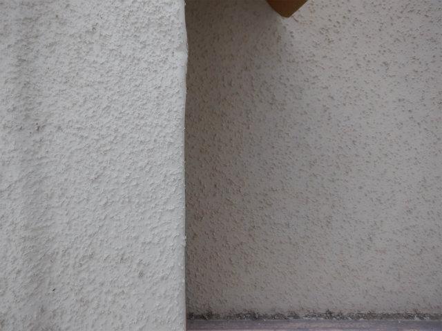 リシン 柄 外壁塗装