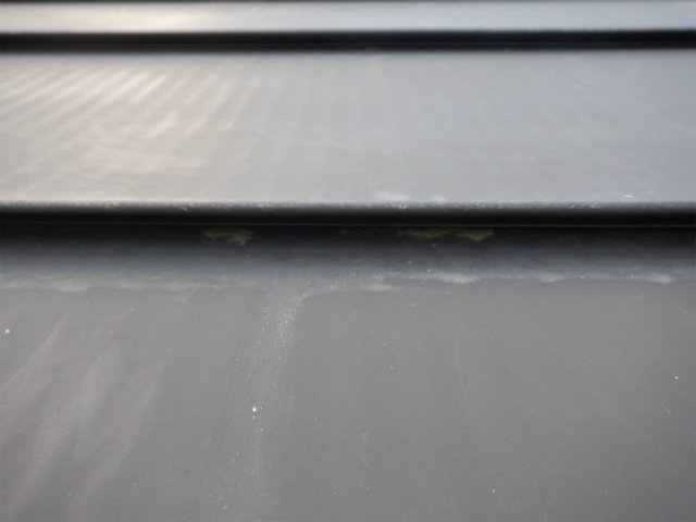 トタン屋根 藻 苔