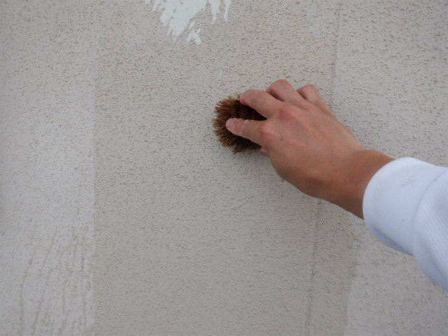 タワシ 手洗い リシン