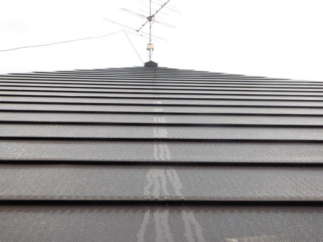 夜露 トタン屋根