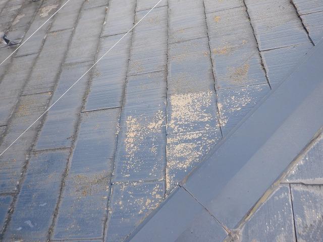 水洗い 屋根